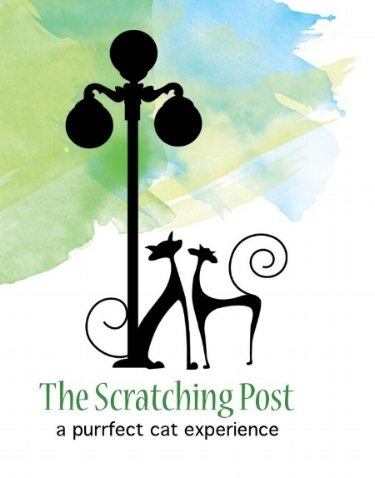 The Scratching Post – Lewisburg Cat Café